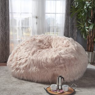 Furry Bean Bag Chair by Greyleigh Looking for