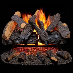 Vented Natural Gas Fireplace Log Set by Duluth Forge
