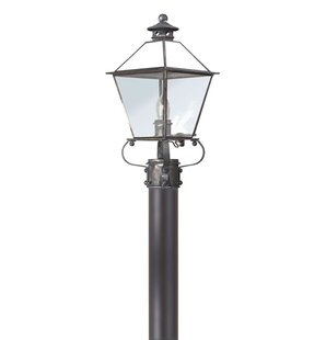 Theodore Contemporary 1-Light Incandescent Lantern Head by Darby Home Co
