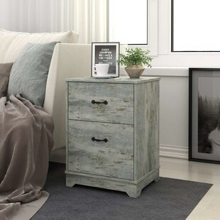 Inexpensive Servin 2 Drawer Nightstand by Gracie Oaks