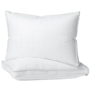 Plush Hypoallergenic 2 Pack Gel Fiber Queen Pillow