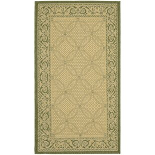 Beasley Indoor/Outdoor Natural/Olive Area Rug