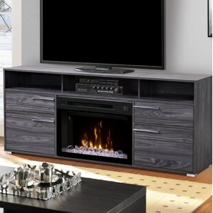 Sander TV Stand for TVs up to 50 with Fireplace