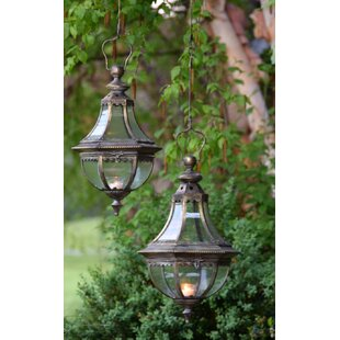 Samir Garden 1-Light Outdoor Hanging Lantern (Set of 2) by August Grove