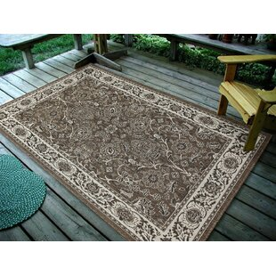Maison Brown/Beige Indoor/Outdoor Area Rug by Astoria Grand