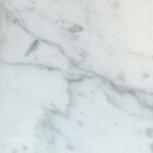 Check Prices Malibu 100 Carrera Marble Single Bathroom Vanity Top ByEmpire Industries