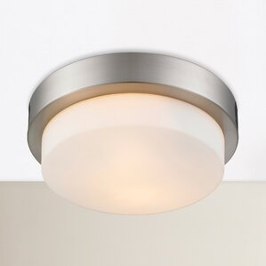 2light outdoor flush mount - Outdoor Ceiling Lights