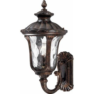Tavira 1-Light Outdoor Sconce