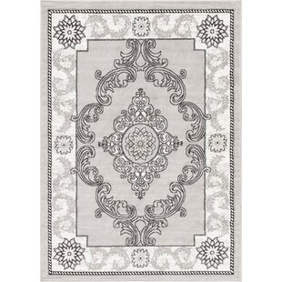 Ash Yonderhill Traditional Gray Indoor Area Rug byWell Woven