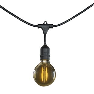 Manno 25 ft. 15-Light Globe String Light by The Holiday Aisle