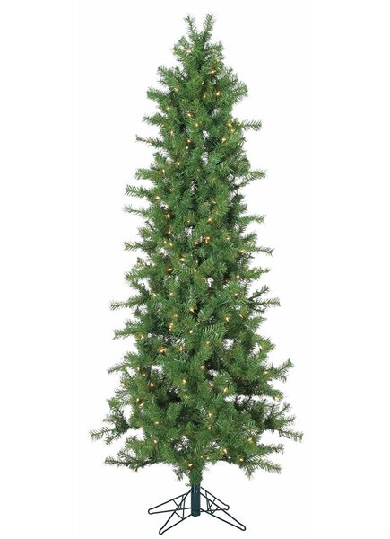 Vickerman 7 Green Spruce Artificial Christmas Tree With 300 Clear Lights Reviews Wayfair
