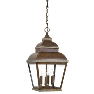 Saniyah 4-Light Outdoor Hanging Lantern