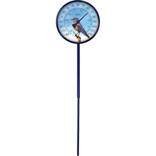 Convertible Bluebird Dial Thermometer By Weems And Plath