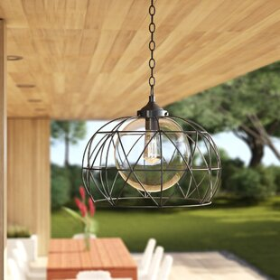 Wyckoff 1-Light Outdoor Pendant