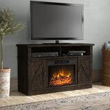 Greenwich TV Stand for TVs up to 50 with Fireplace Included by Gracie Oaks