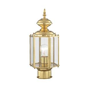 Budget Etelvina 1-Light Lantern Head By Alcott Hill