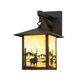 Best Reviews Greenbriar Oak 1-Light Outdoor Wall Lantern By Meyda Tiffany