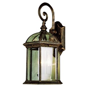 Laurel Foundry Modern Farmhouse Powell Wall Lantern