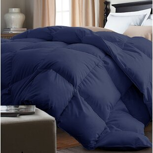 Down Alternative Comforter by Alwyn Home