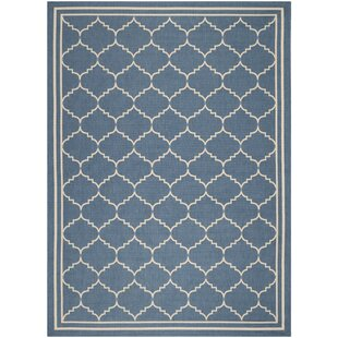 Short Blue Indoor/Outdoor Area Rug