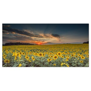 6e6690a4c58  Sunflower Sunset with Cloudy Sky  Photographic Print on Wrapped Canvas