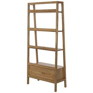 Johnson Ladder Bookcase by Noir