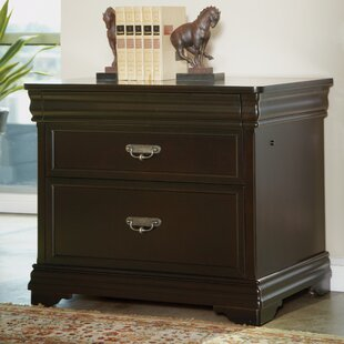 Darby Home Co Lou 2-Drawer Lateral Filing Cabinet