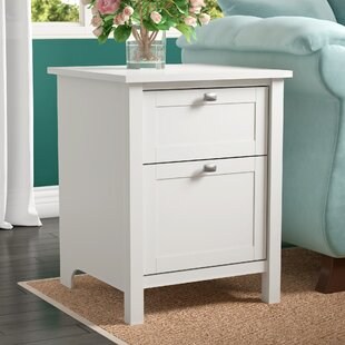 Best Reviews Wallen 2 Drawer Vertical Filing Cabinet by Charlton Home