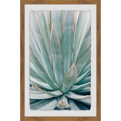 ArtWall Dean Uhlinger 4 Piece Agave Puesta Gallery-Wrapped Canvas Set 24 by 32