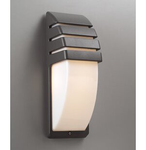 Top Reviews Schuck 1-Light Outdoor Flush Mount By World Menagerie