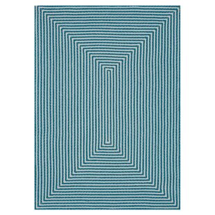 Gout Hand-Braided Blue Indoor/Outdoor Area Rug