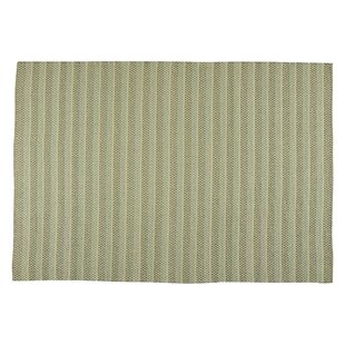 Hayes Sage Indoor/Outdoor Rug