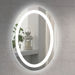 Illuminated Oval Bathroom / Vanity Mirror