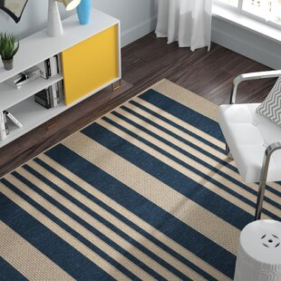 Sophie Navy/Beige Indoor/Outdoor Area Rug