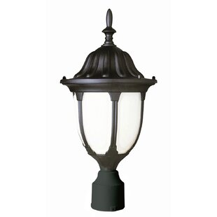 Reviews Tucker Lantern Head By Charlton Home