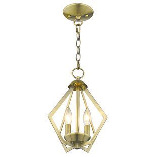 Willa Arlo Interiors Borasisi 2-Light Foyer Pendant