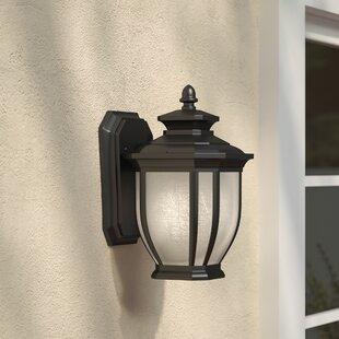 Three Posts Greenview Metal 1-Light Outdoor Wall Lantern