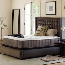 Estate Bridle II 14.5 Inch Plush Mattress by Stearns & Foster