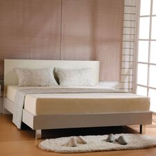 Queen 6'' Memory Foam Mattress by InRoom Designs