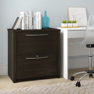 Latitude Run Karyn 2 Drawer File Cabinet