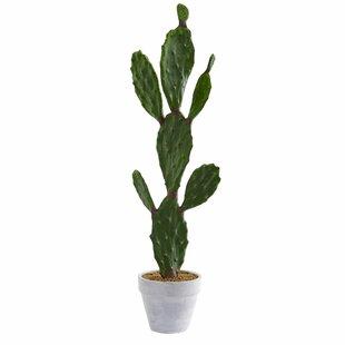 Artificial Cactus Plant In Pot