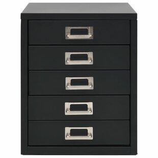 Bruner 5 Drawer Filing Cabinet By Rebrilliant