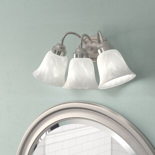 Johnsonburg 3-Light Vanity..