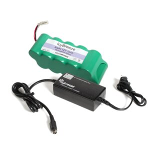 Battery and Smart Charger