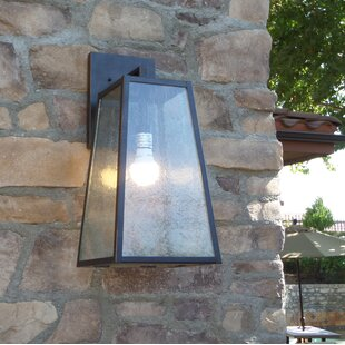 Ivy Bronx Devaney LED Outdoor Wall Lantern
