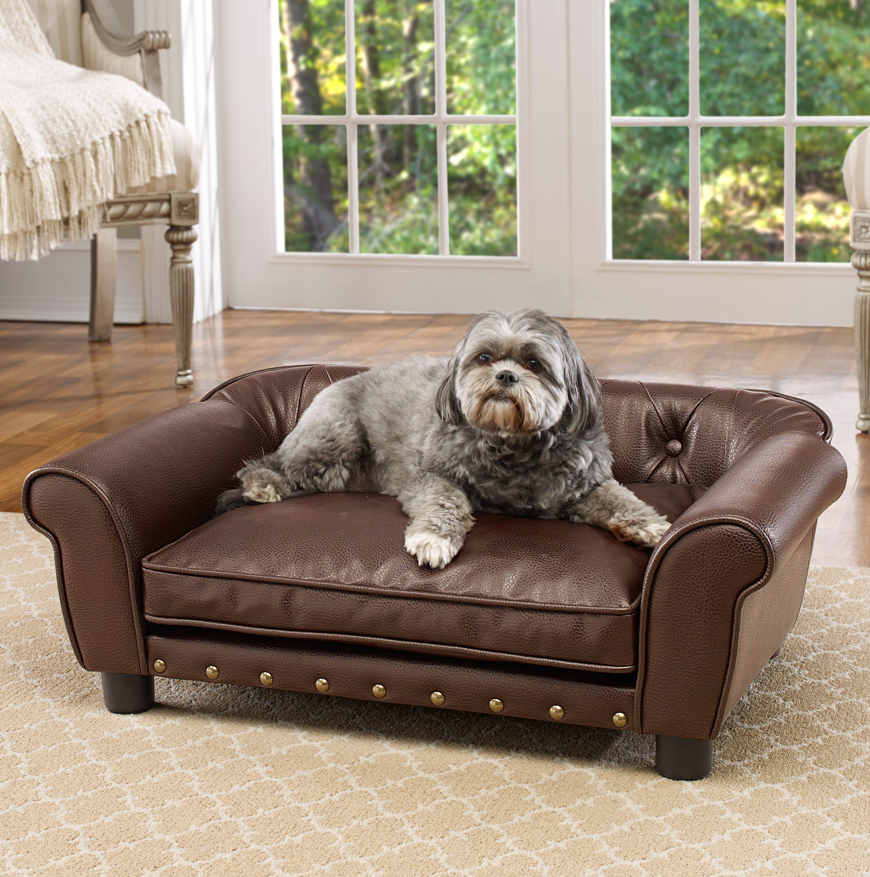 of our leather dog selection front gray dogs for at look serta take beds couch large bed buy a pet