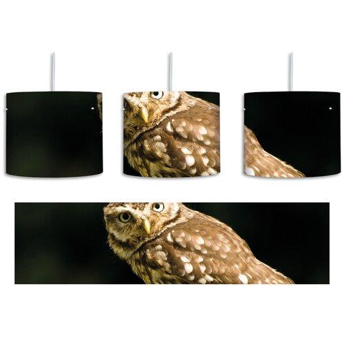 Small Owl 1-Light Drum Pendant East Urban Home