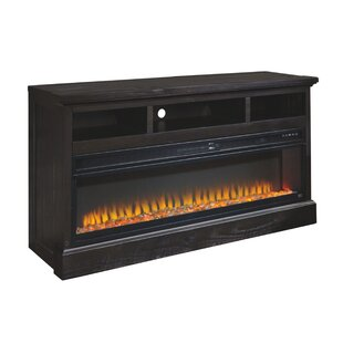Knighten Electric Fireplace Insert by Charlton Home