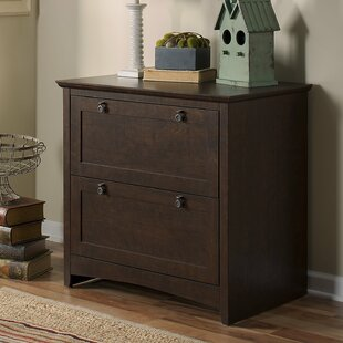 Darby Home Co Fralick 2-Drawer Lateral Filing Cabinet