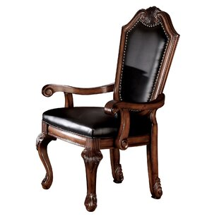 Alfort Black Arm Chair (Set of 2) by Astoria Grand